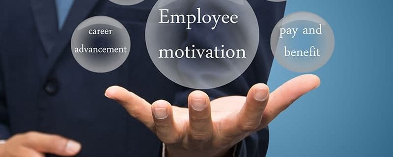 Graphic showing what motivates employees.